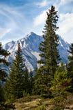 Cascade Mountain Stock Image