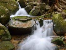 Cascade mountain creek Stock Image