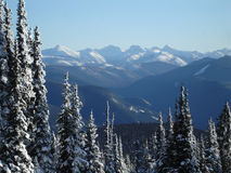 Cascade Mountain Range Royalty Free Stock Photography