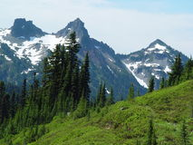 Cascade Mountain Range. Viewed from the Paradise area of Mount Rainier Royalty Free Stock Image