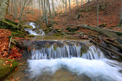 Cascade of mountain river in autumn forest Royalty Free Stock Photography
