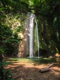 Cascade in the forest. Royalty Free Stock Images