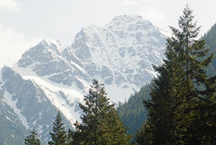 Cascade Mountains Royalty Free Stock Photos