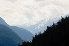 Cascade Mountains Stock Photography