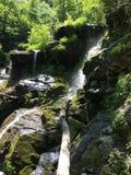 Cascade moussue verte Image libre de droits