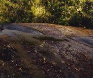 Cascade Penedo photo stock