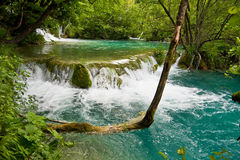 Cascade in Plitvice, Croatia Royalty Free Stock Image