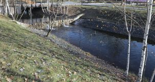 Cascade pond in the park. In the urban landscape park Yuzhnoye Butovo, the freezing cascade pond stock video footage