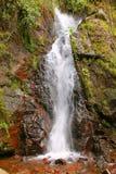 Cascade près de Morelia IV Photos stock