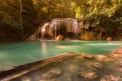 Cascade profonde de forêt de courant bleu dans la jungle naturelle images stock