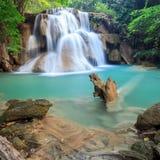 Cascade profonde de forêt dans Kanchanaburi (Huay Mae Kamin) Images stock
