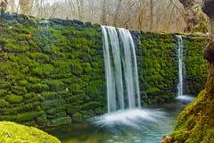 Cascade profonde de forêt sur Mary River folle, montagne de Belasitsa, Bulgarie Image stock