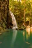 Cascade profonde fraîche de forêt photos stock