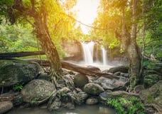 Cascade puissante entourée par des arbres et des roches Photos stock