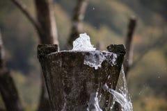 Cascade pure d'eau douce dans la forêt dans les montagnes Le vieux fontain se ferment  photos libres de droits