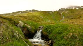 Cascade on small mountain stream in Alps, water is running over stones in green meadow stock footage