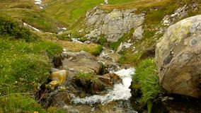 Cascade on small mountain stream in Alps, water is running over stones in green meadow Stock Photo