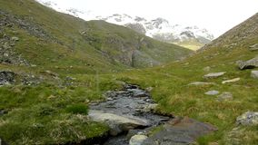 Cascade on small mountain stream in Alps, water is running over stones in green meadow stock video