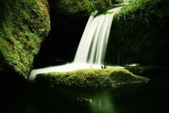 Cascade on small mountain stream. Cold crystal  water is falling over basalt mossy boulders into small pool. Stock Photo