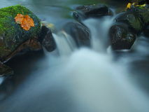 Cascade on small mountain stream, water is running over mossy sandstone boulders and bubbles create on level milky water. Stock Photo