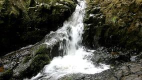 Cascade on small mountain stream, water is running Stock Image
