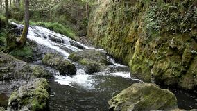 Cascade on small mountain stream, water is running. Trough big crack in basalt boulder and bubbles create on level milky water stock video footage