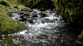 Cascade on small mountain stream, water is running stock footage