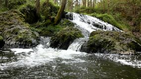 Cascade on small mountain stream, water is running Stock Photos