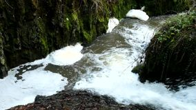 Cascade on small mountain stream, water is running trough big crack in basalt boulder and bubbles create on level milky water. stock video
