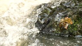 Cascade on small mountain stream, water is running trough big crack in basalt boulder and bubbles create on level milky water. stock footage