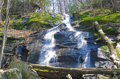 Cascade in the Smokies Royalty Free Stock Photo