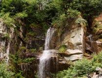 Cascade sortant d'une forêt dense Images stock