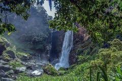 Cascade Sri Lanka de Laxapana Image libre de droits
