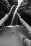 Cascade in Starved Rock. Gentle cascade flowing over fallen trees in black and white.  Kaskaskia Canyon, Starved Rock, Illinois Royalty Free Stock Photos