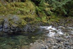 Cascade Stream Royalty Free Stock Photos