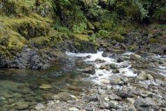 Cascade Stream Stock Image