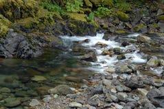 Cascade Stream Royalty Free Stock Image