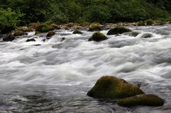 Cascade Stream Royalty Free Stock Images