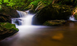 Cascade on a stream in Rickett's Glen State Park Royalty Free Stock Images