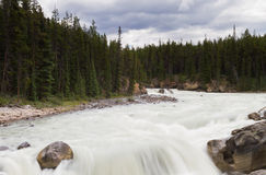 Cascade of the Sunwapta river Royalty Free Stock Photography