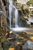 Cascade sur la rivière de montagne en automne Photos libres de droits