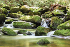 Cascade sur la traînée aux chutes de Henwallow Photographie stock