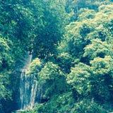 Cascade sur Maui, Hawaï Photographie stock