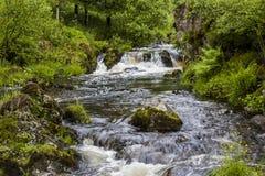 Cascade sur Watendlath Beck, secteur anglais de lac, Cumbria, Angleterre Photos libres de droits