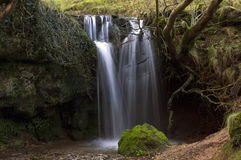 Waterfall Cascading through Tree Roots Tufa Dam, L Royalty Free Stock Images