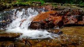 Cascade in tropical forest. Water flow of the cascade in tropical forest, Thailand stock footage