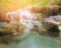 Cascade tropicale de forêt naturelle en parc national Images stock