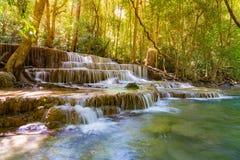 Cascade tropicale de forêt profonde photos stock