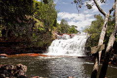 Cascade tropicale de paradis au Venezuela Photos libres de droits