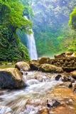 Cascade tropicale et rivière débordante Photographie stock